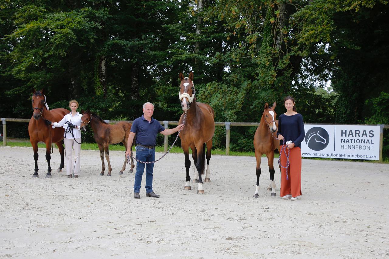Concours Foals FEDEB - victoire revient à Kellemoi Varnel (Balou du rouet x Kannan).