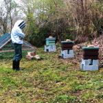 Haras National Hennebont Agir pour préserver la biodiversité